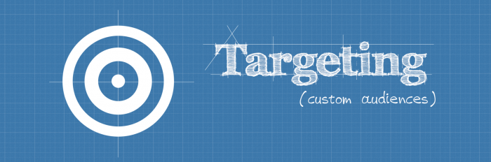 TargetingCustomAudiences-700x232